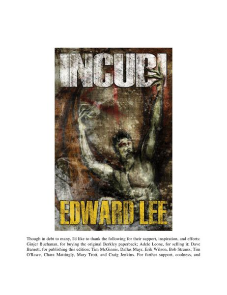 Book cover of Incubi
