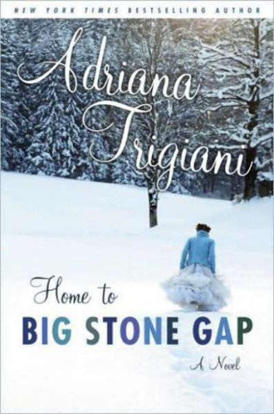 Book cover of Home to Big Stone Gap